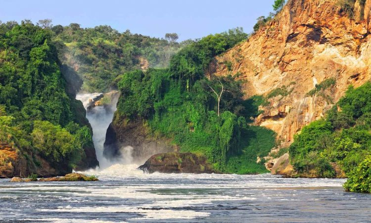 Uganda the pearl of Africa for magnificence, color for profusion of brilliant life, birds, insect, reptiles, beasts-for vast scale Uganda pearl of Africa
