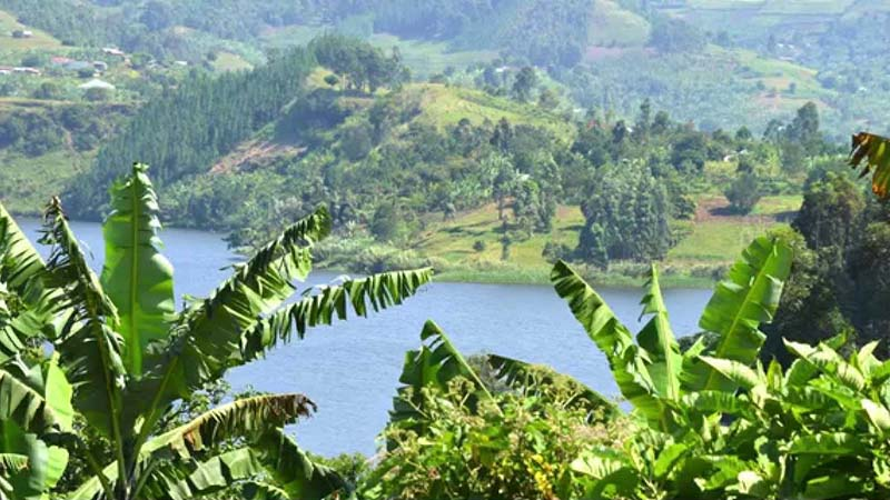 Uganda the pearl of Africa for magnificence, for variety of form and color for profusion of brilliant life, -birds, insect,reptiles,beasts-for vast scale