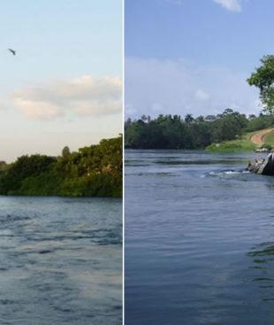 Uganda Wildlife Education Centre (UWEC) and Entebbe Botanical gardens