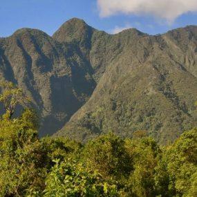 Mountain Sabinyo mountain hiking safari is intended for those interested in Mountain Sabinyo hiking