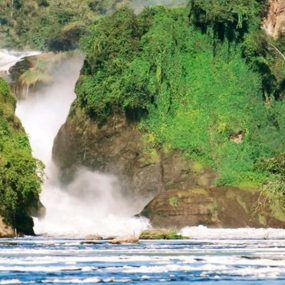 Murchison Falls national park safari will take you to Murchison falls national park to encounter wildlife species such as the herds of huge Elephants and Caped Buffaloes Ziwa white rhino sanctuary