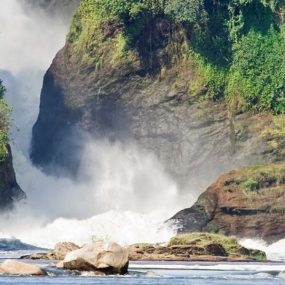 Uganda safari will take you to the Uganda's most visited and largest national park known as Murchison Falls National Park, found in Northwestern Uganda for games drives