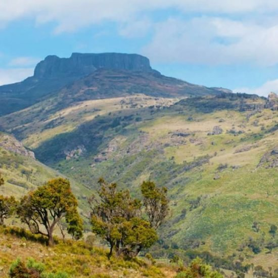 5 days Uganda tour will take you Mount Elgon national park in the eastern region Uganda for mountain hiking. Mount Elgon is one of Uganda's oldest physical features that was formed by volcanic eruption