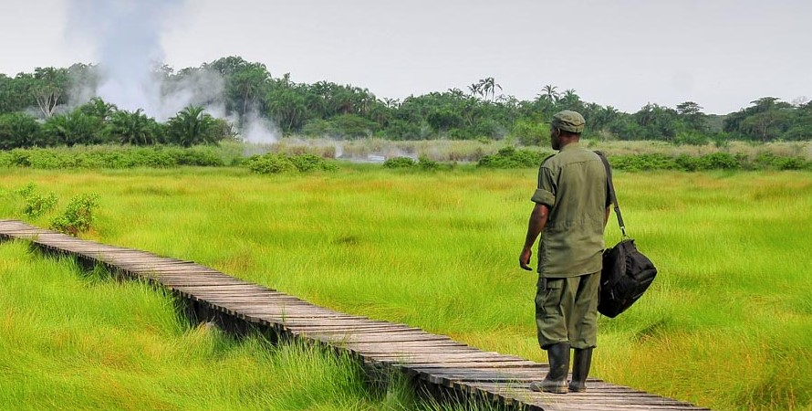 Visit Semuliki national park in the Western parts of Uganda in Bundibugyo district and it is the newest destination than other national parks of Uganda that cuts across Semuliki valley in the western Rwenzori Mountains